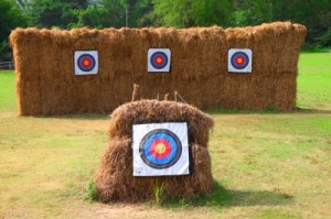 """If you hit these haystacks with an arrow, then I guess you literally are """"hitting the hay."""