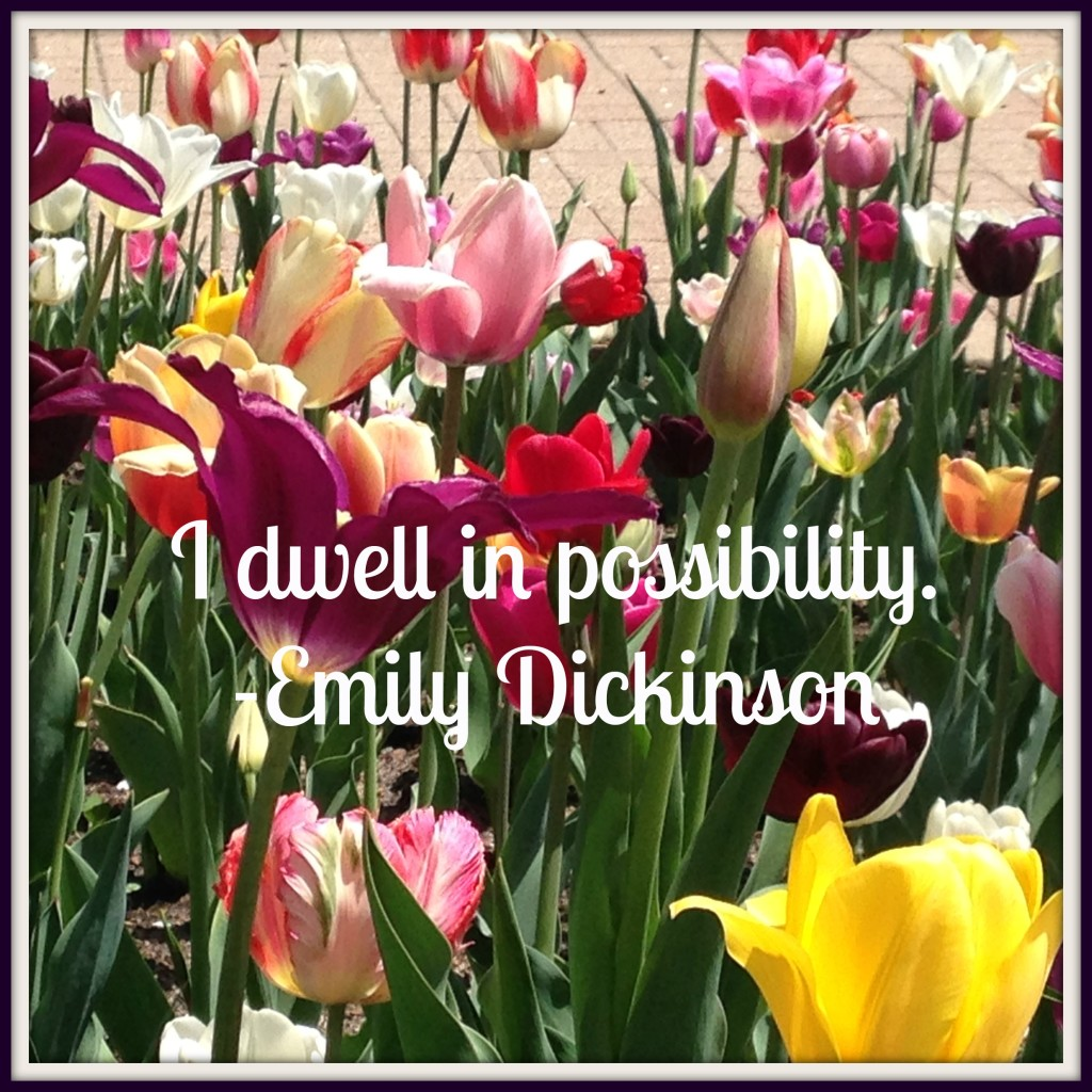 Dwell in Possibility Dickinson