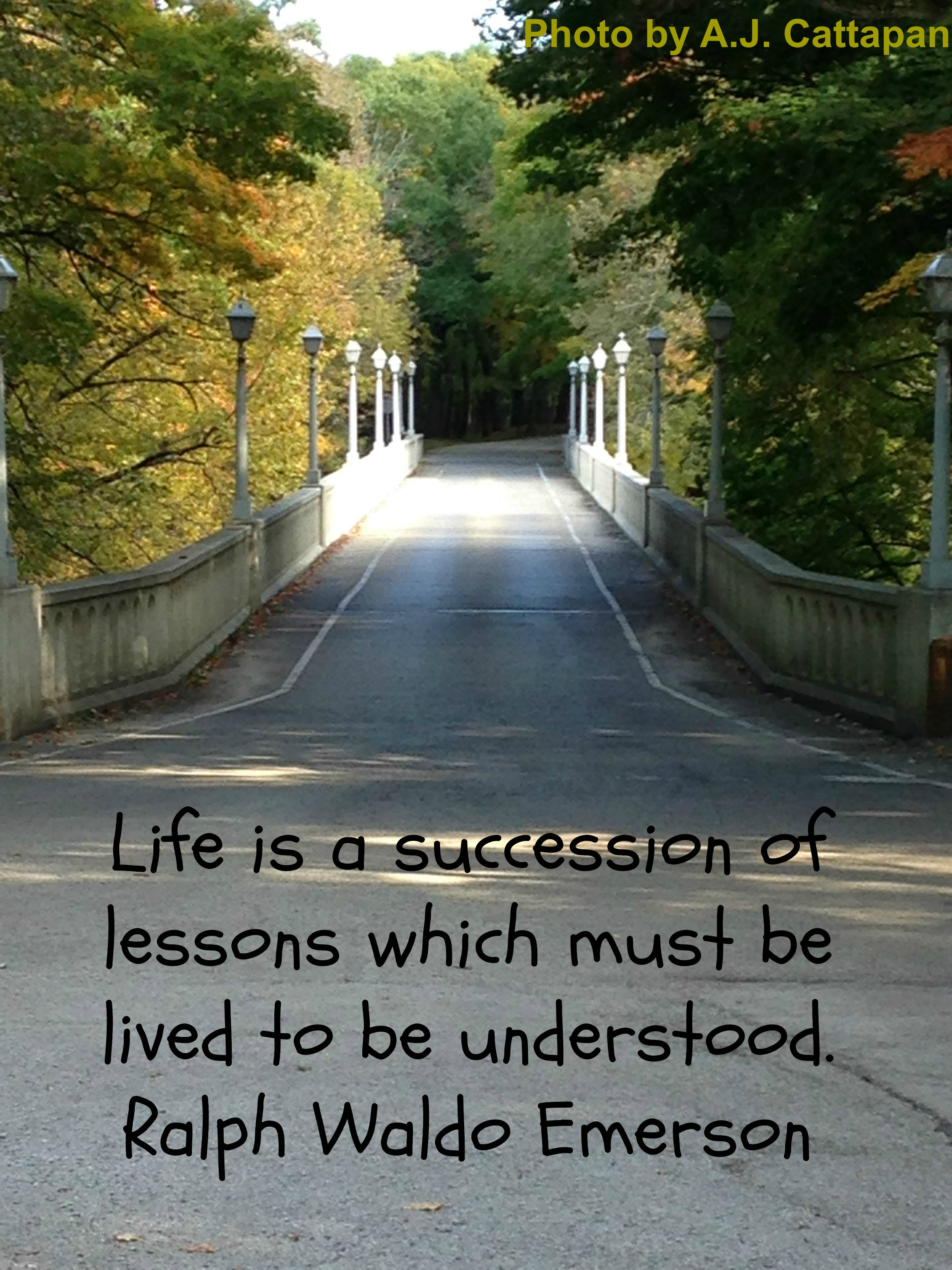 Life is a succession2