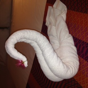 Towel swan that greeted us at our hotel
