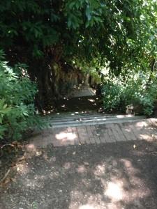 My hidden staircase up Gianicolo