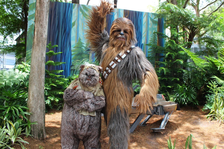Chewbacca and Ewok